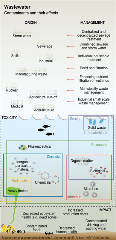 wastewater-contaminants-and-their-effects